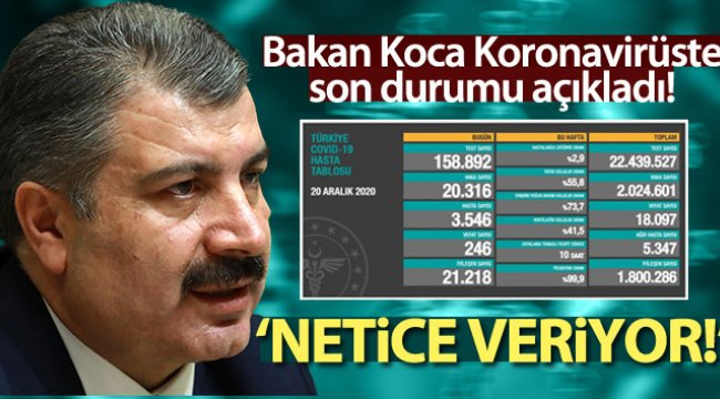 Türkiye'de son 24 saatte 246 kişi hayatını kaybetti
