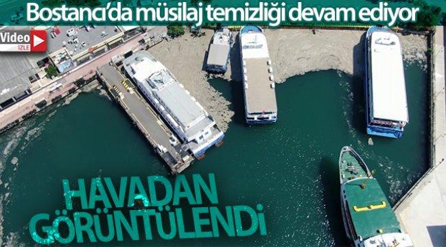 Bostancı'da devam eden müsilaj temizliği havadan görüntülendi