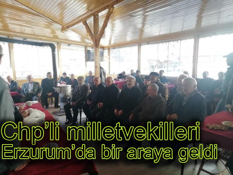 Chp'li milletvekilleri Erzurum'da bir araya geldi